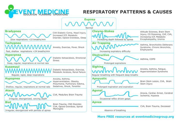 respiratory pattern Google Search in 2020 Brain stem