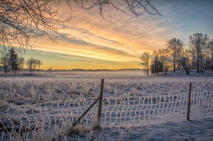 Sunrise landscape over Färingsö, Ekerö, Sweden