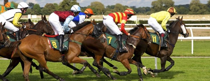We have best Horse race #betting_tip available from the Race Day Ratings. The Betting Site has everything you need to know about betting and horse racing in the UK.