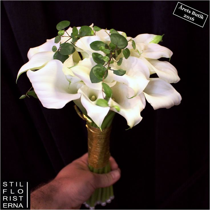 Klassiskt stilren brudbukett med vita kallor.