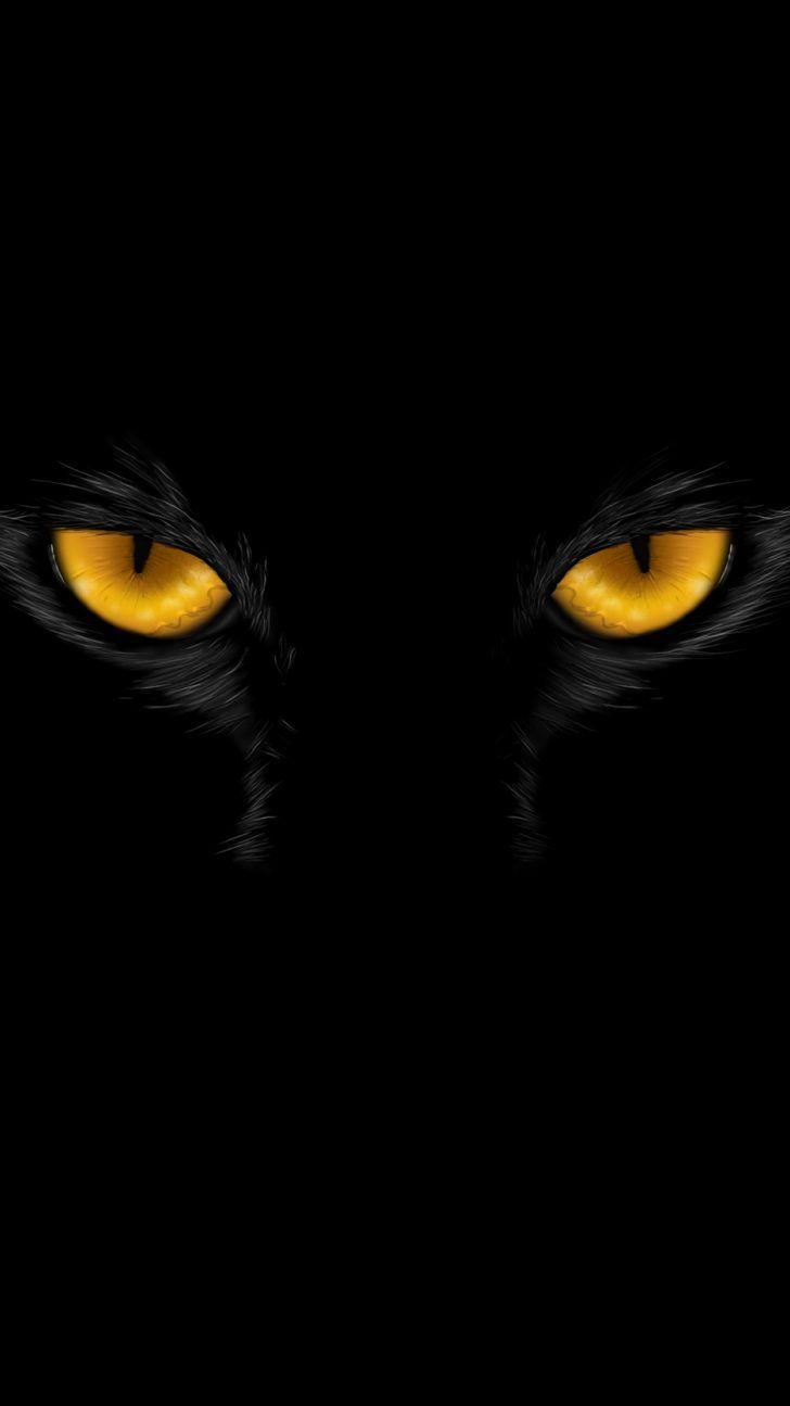 105 New Amazing Iphone Xr Backgrounds Eyes Wallpaper Cat Wallpaper Black Cat Art
