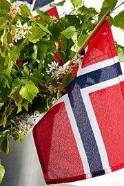The Norwegian flag....how honored it is.