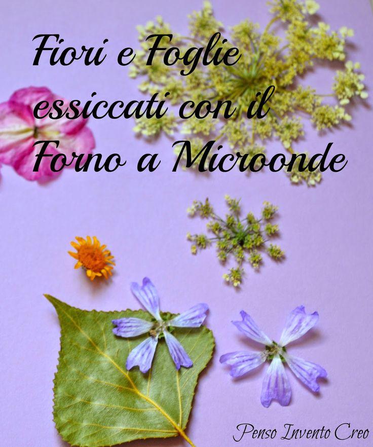 penso+invento+creo: Come essiccare Fiori e Foglie con il Microonde in pochi minuti