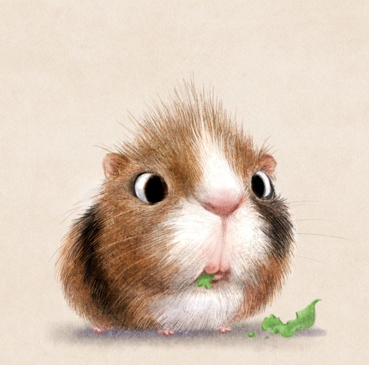 I've stumbled upon some Overwhelmingly Cute Animal Illustrations by Sydney Hanson. Their cuteness will surely melt your tiny little hearts.