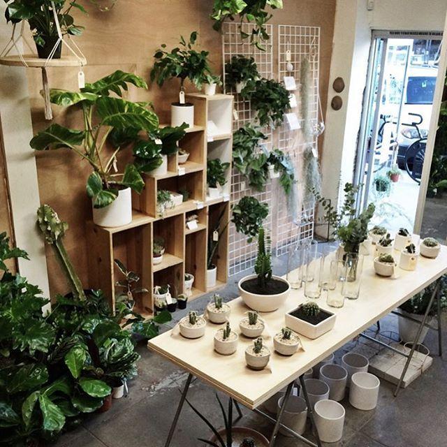 Flower Design Shop: 1000+ Ideas About Flower Shop Interiors On Pinterest