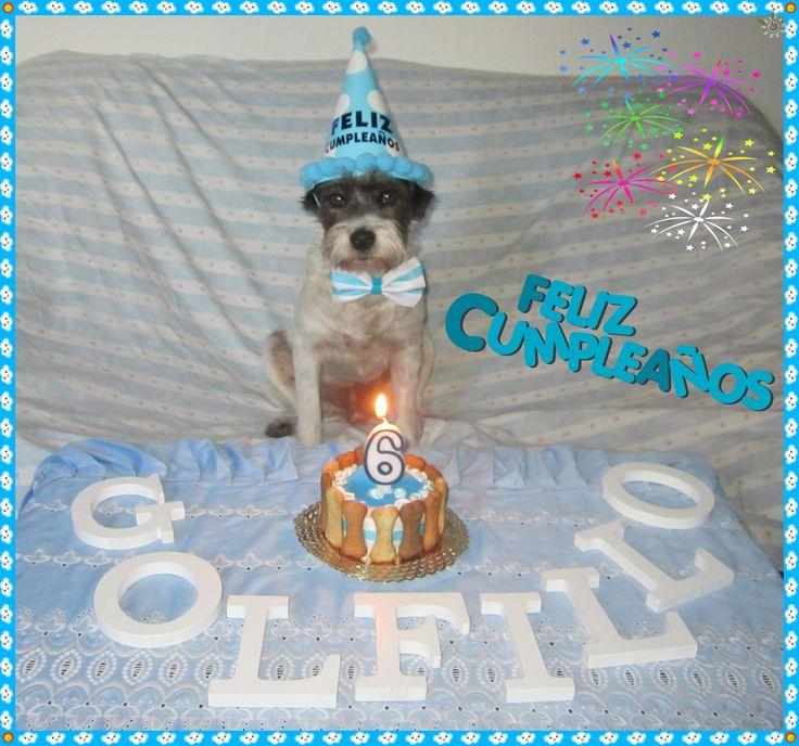 Cumpleaños Golfillo