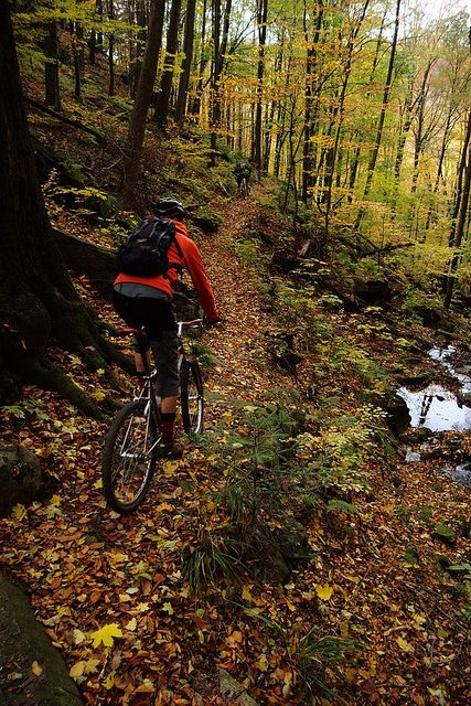 Mountain biking in the fall