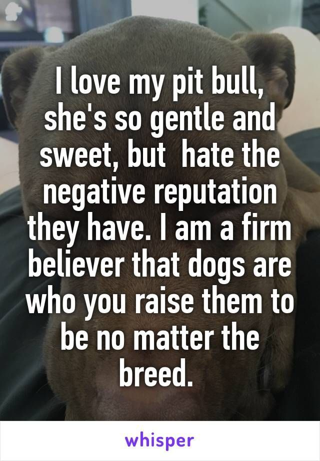 I love my pit bull, she's so gentle and sweet, but  hate the negative reputation they have. I am a firm believer that dogs are who you raise them to be no matter the breed.