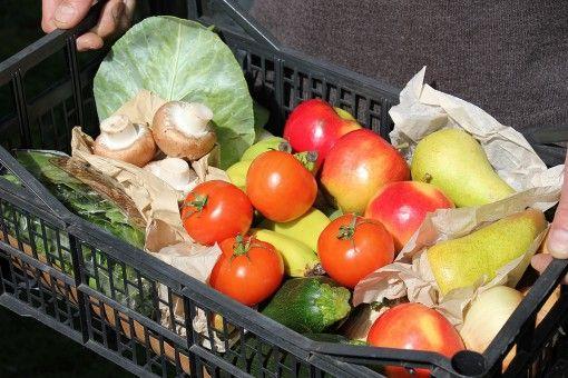 Standard Organic Vegetable Box - Foodlife Doorstep Deliveries (category: Best organic box scheme)