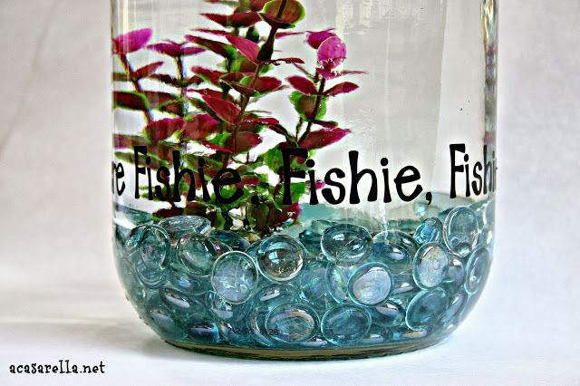 DIY a fish bowl from a one gallon pickle jar