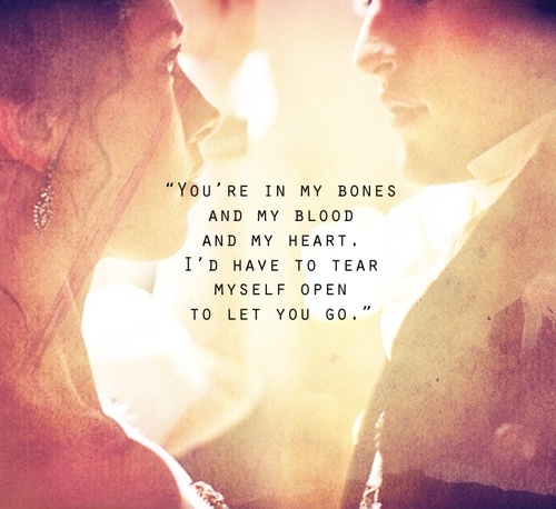 You're in my bones and my blood and my heart. I'd have to tear myself open to let you go. - Clockwork Princess