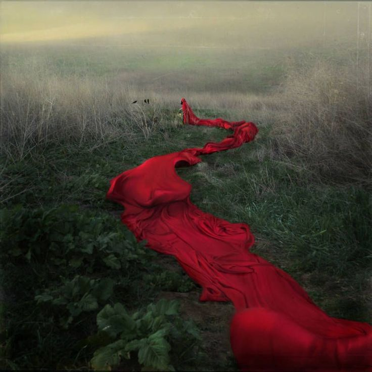 "If you love RED: This limited edition photograph entitled ""Red River's Journey"" is by artist Trini Schultz, who was born in Peru and now lives in California. Discover more of Trini's work at @SaatchiArt. [Promotional Pin]"