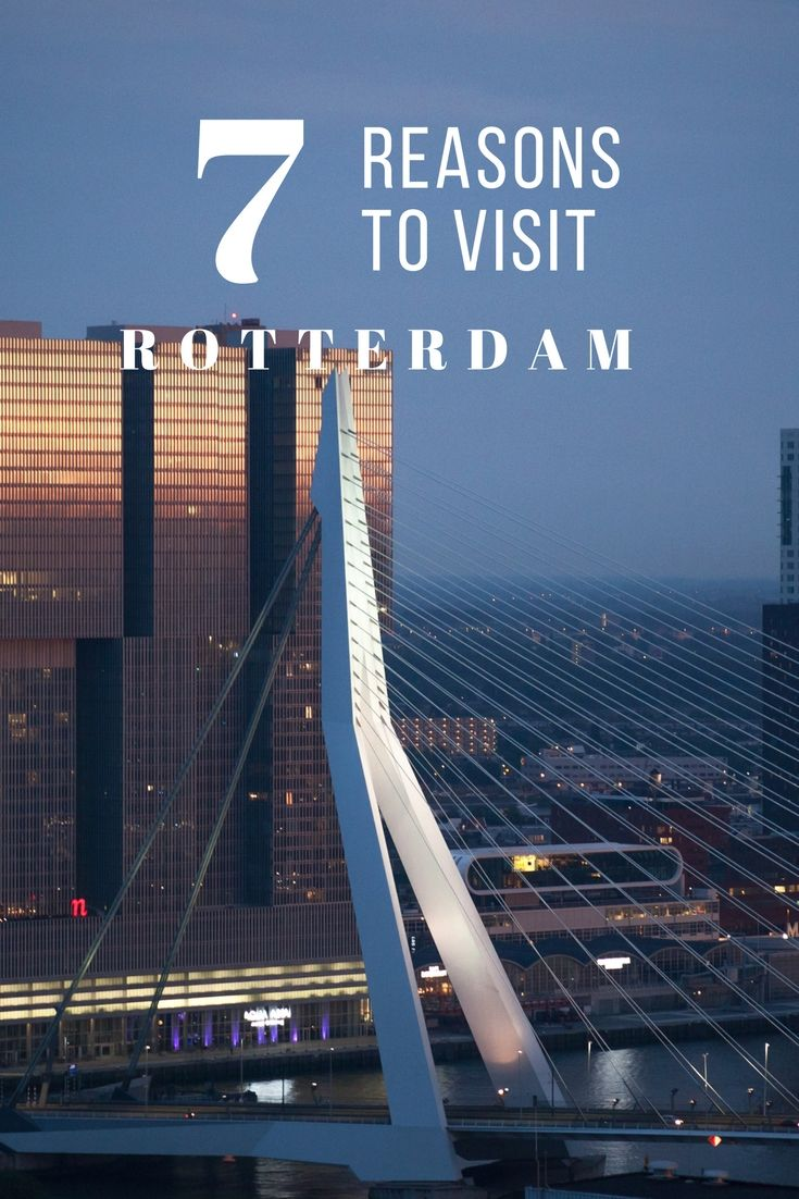 What to see and do in Rotterdam the Netherlands