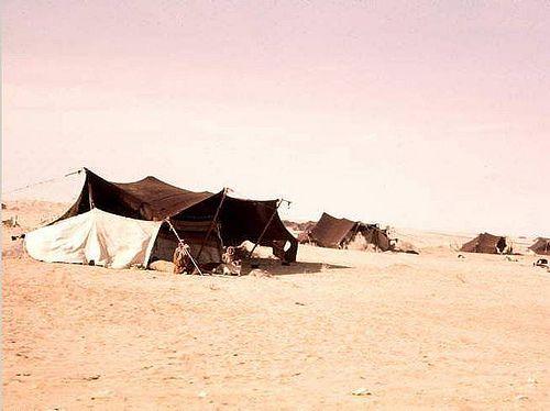 Saudi Arabia 1960s. Bedouin tent