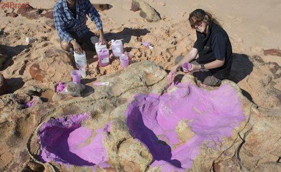 Cientistas identificam 150 pegadas de 21 espécies de dinossauros na Austrália