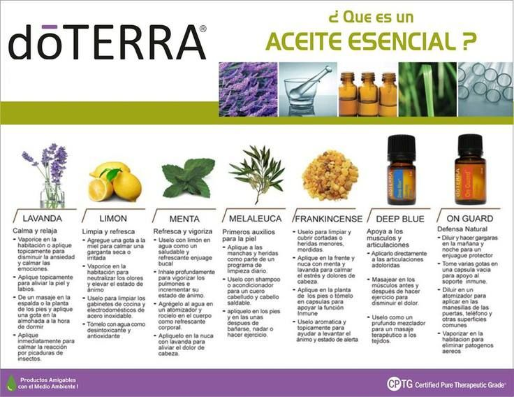32 best images about Essential Oil on Pinterest