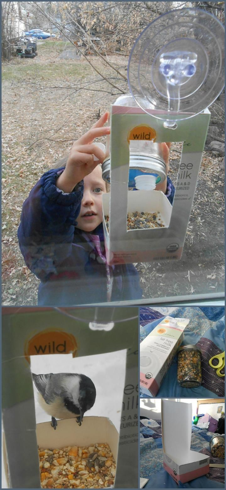 Diy window bird feeder - 89 Unique Diy Bird Feeders Full Step By Step Tutorials