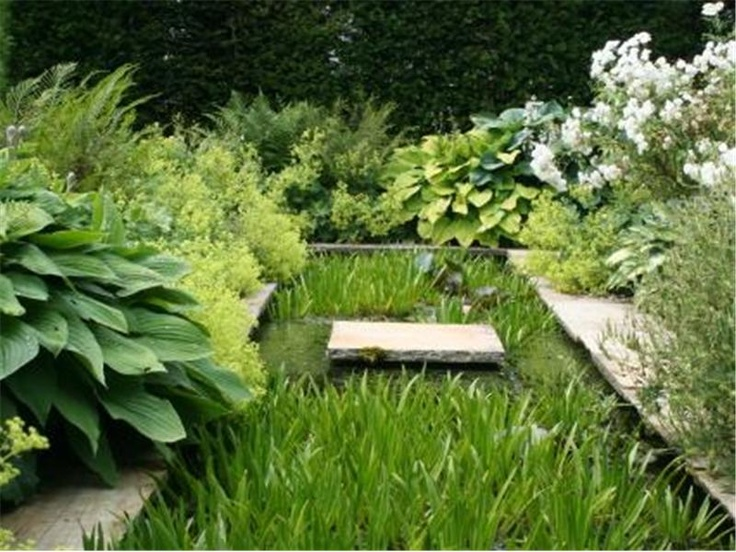 Love this pond idea, but too much foliage around it for me