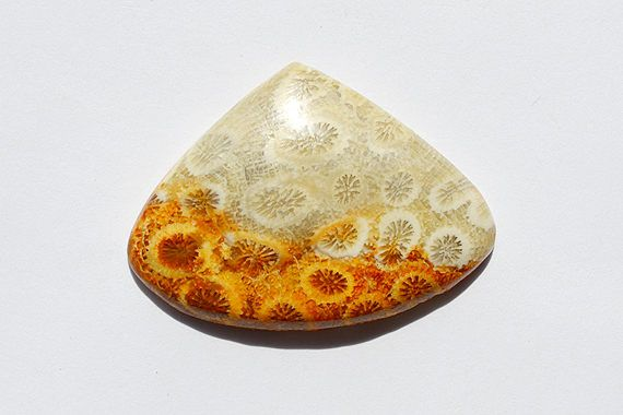 38.5 Cts Natural Fossil Coral Gemstone Cabochon Awesome Designer Pear Fossil coral Loose Cabochon 28x38x5 MM R06702 by JAIPURARTMART on Etsy