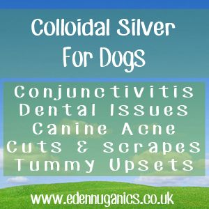 131 Best Images About Colloidal Silver For Dogs On