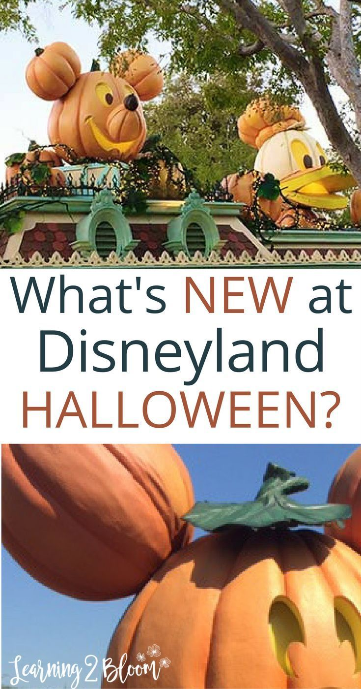 Check out the Halloween decorations and party at Disneyland this Halloween. It's the best vacation you can plan this fall. Perfect weather, perfectly fun for the whole family! Check out the best deals out there with Get Away Today.