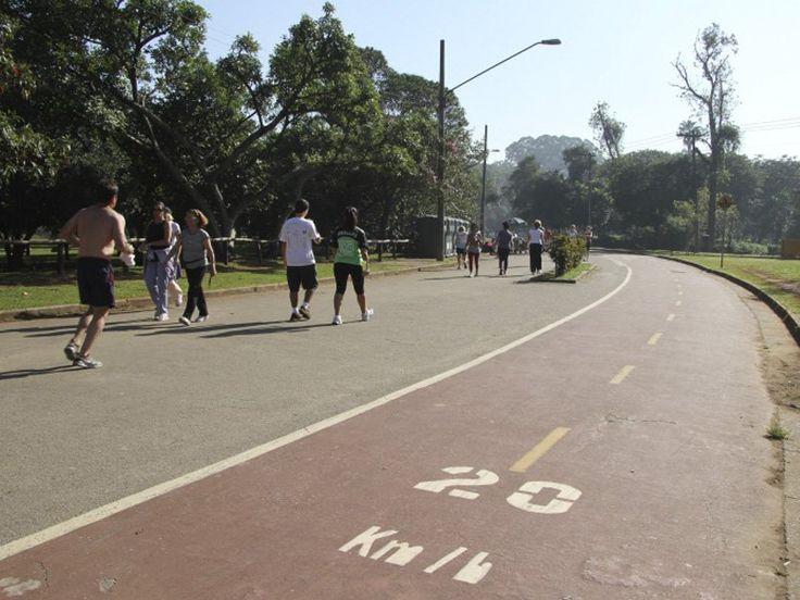 Os visitantes encontram ainda lanchonetes, restaurante, sorveteria, banca de jornais e revistas, áreas de estar, ciclofaixa e bicicletário com aluguel de bicicleta no local.