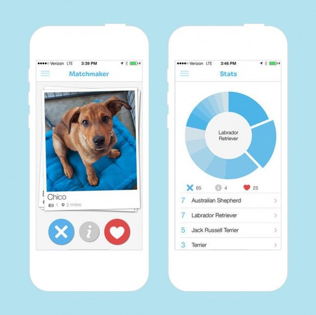 Introducing the puppy version of Tinder.