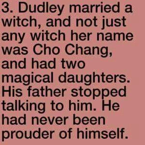 Harry Potter><as cool as that would be... Dudley and cho?? How bout no