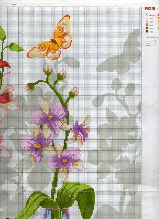 Orquídeas 4