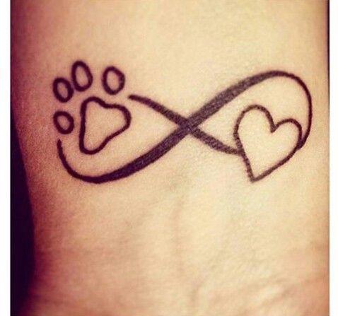 Amor infinito por pets