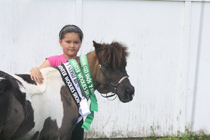 Equine Trader Vetpro Photo of the Week entrant - Gaylene Ranga