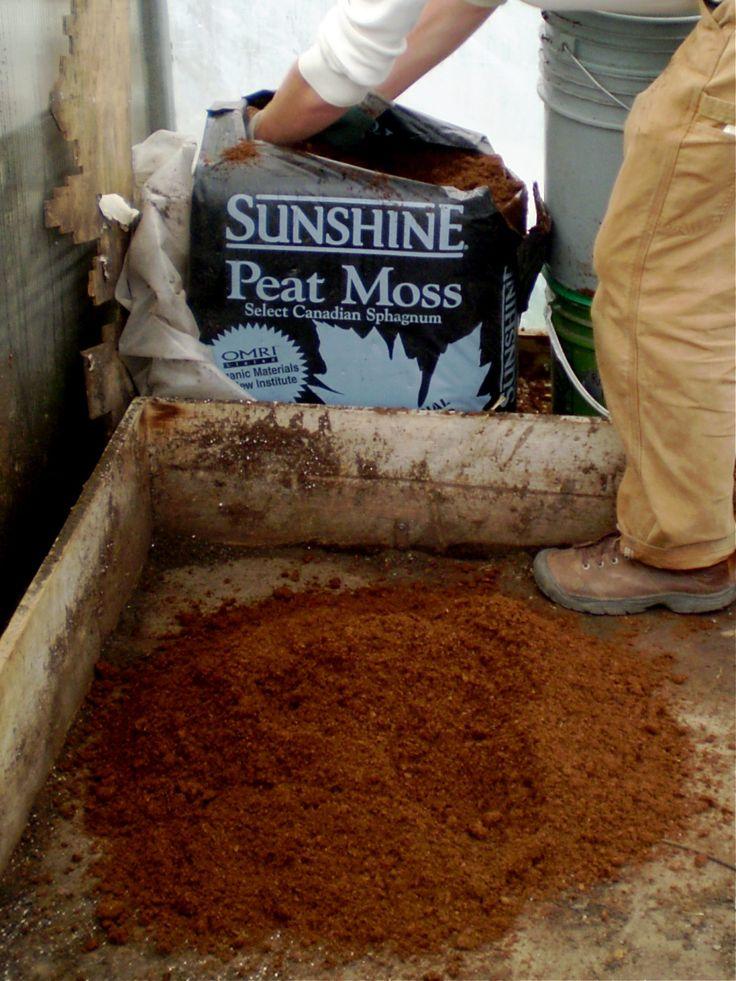 making soil blocks Peat moss, Edible garden