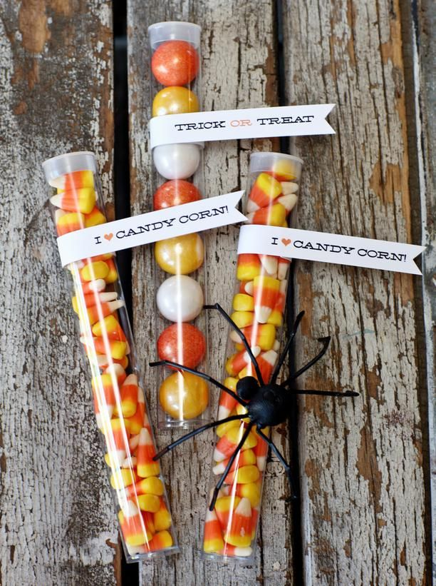 21 Halloween Party Favor and Treat Bag Ideas : Decorating : HGTV: Treat Bags, 21 Halloween, Halloween Party Favors, Candy Corn, Test Tube, Party Ideas, Halloween Favor