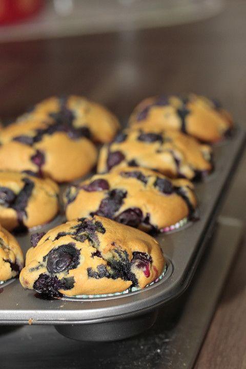 Omas Blaubeermuffins   – Kuchen und Köstlichkeiten
