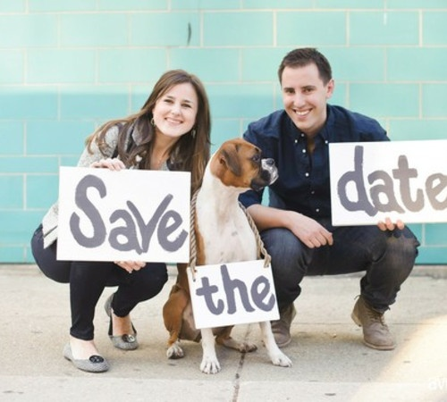 save the date idea: Save The Date, Engagement Pictures, Engagement Ideas, Boxers Dogs, Engagement Photos, Dogs Photos, Wedding Pin, Date Ideas, Wedding Pictures