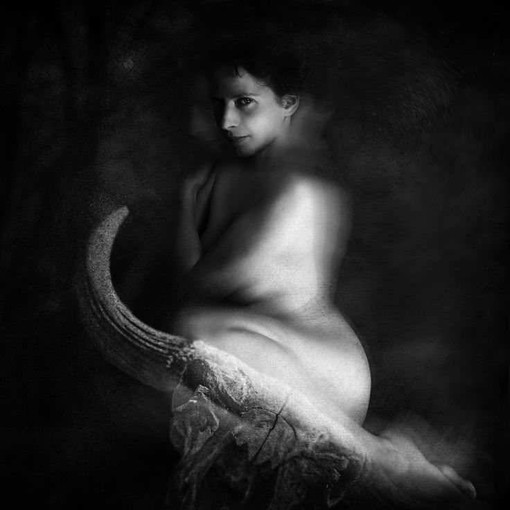 Photography, Montage in People, Nude, Female, Zeus was enamored of Europa and decided to seduce or ravish her, the two being near-equivalent in Greek mythology. He transforme… - Image #554877
