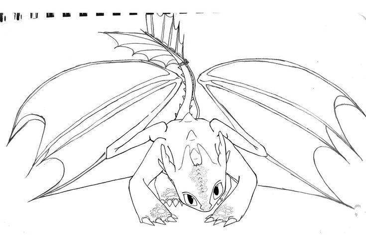 toothless wipshiila  dragon coloring page how train