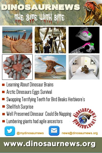 This Week - Learning About Dinosaur Brains * Arctic Eggs Survival * Swapping Terrifying Teeth for Bird Beaks * Herbivore's Shellfish Surprise * Dinosaur So Well Preserved It Could Be Napping http://www.dinosaurnews.org #dinosaurs #news #fossils #dinosaurnews