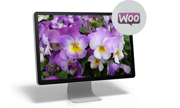 WooCommersce - это простая установка, множество дополнительных, как платных, так и бесплатных модулей. Темы WooCommersce.