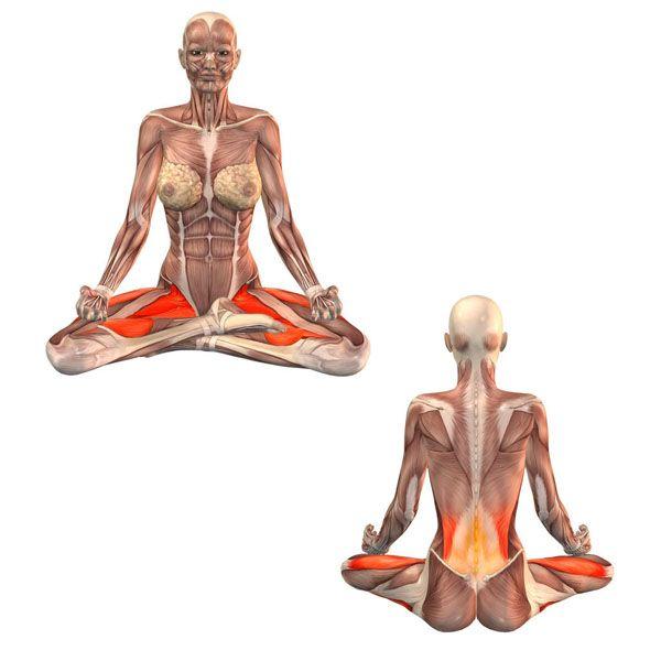 Perfect pose - Muktasana - Yoga Poses | YOGA.com