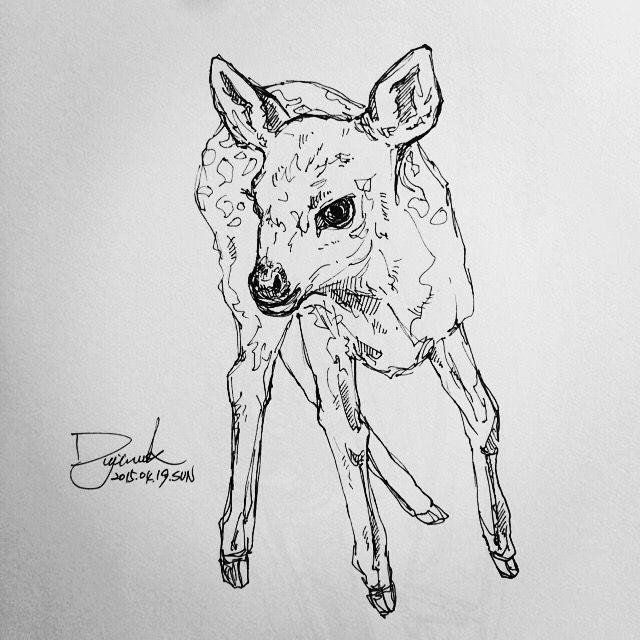 [펜화] bambi / 스케치,그림,드로잉,일러스트,낙서,sketch,penart : 네이버 블로그
