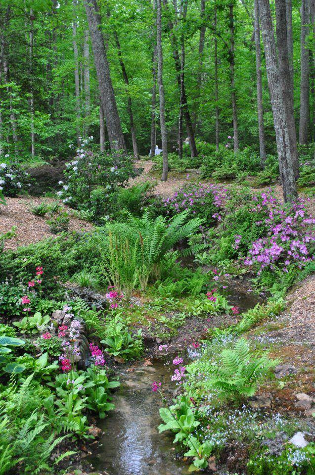 Les 125 meilleures images du tableau jardin sur pinterest for Idees plantations exterieures