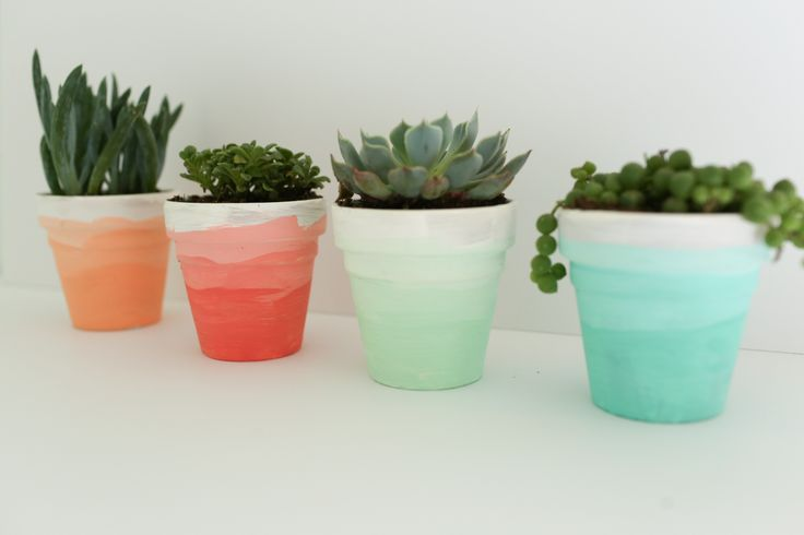 A DIY tutorial that shows you how to create these ombre succulent pots. Perfect for your home or for a party! www.thedempsterlogbook.com