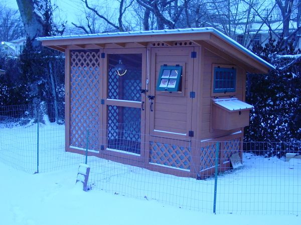 Diy Wichita Cabin Coop Complete Instructions With