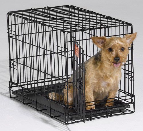Qpets 24 by 18 by 21-Inch Dog Cage, Medium >>> Click image to read more details.