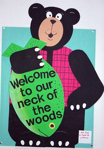 """""""Welcome to Our Neck of the Woods"""" bear and fish bulletin board"""