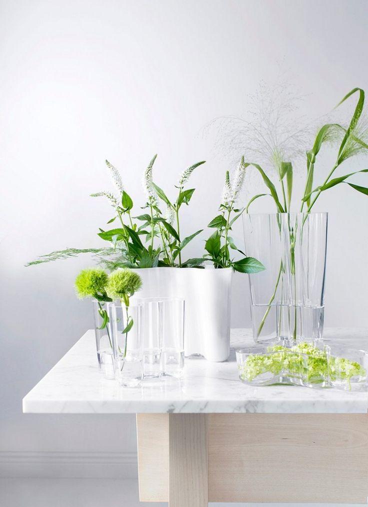 best 20+ vase transparent ideas on pinterest   le jardinage de