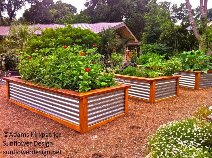 1049 best Edible Landscaping images on Pinterest Vegetable