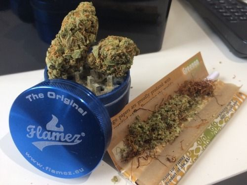 Orders and get it shipped all over USA and overseas, If you're looking for some killer bud hit me back. I ship to all 50 states and take what I do very seriously. Especially when it comes to shipping and payment. To place an order TEXT OR CALL 980 354 4128  or wickr stonermayne420