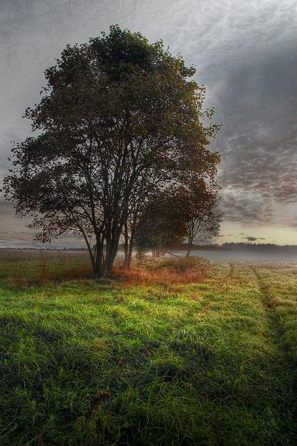Warmia landscape in HDR by wyrzykus, via Flickr